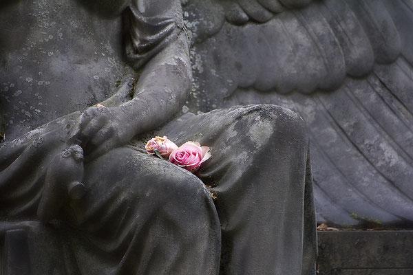 Rosen im Schoß (3) - © Helga Jaramillo Arenas - Fotografie und Poesie / Februar 2016