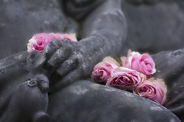 Rosen im Schoß (1) - © Helga Jaramillo Arenas - Fotografie und Poesie / Februar 2016
