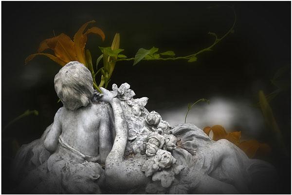 Sehnsucht nach den Blumen - © Helga Jaramillo Arenas - Fotografie und Poesie / Dezember 2014