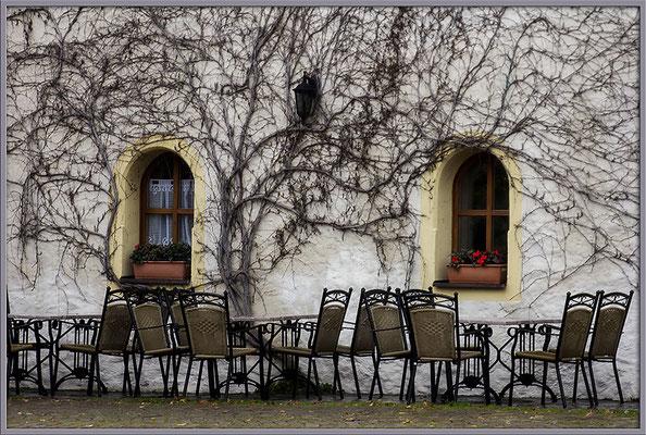 Das Warten auf den Frühling - © Helga Jaramillo Arenas - Fotografie und Poesie / Dezember 2017