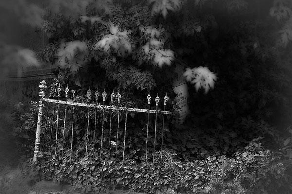 Aus alten Zeiten -  © Helga Jaramillo Arenas - Fotografie und Poesie / Februar 2021
