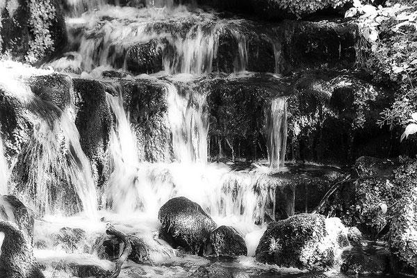 Wasserleuchten II. -  © Helga Jaramillo Arenas - Fotografie und Poesie / Juli 2021