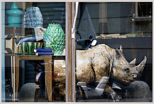 Klägliche Irrwege - © Helga Jaramillo Arenas - Fotografie und Poesie / Mai 2013