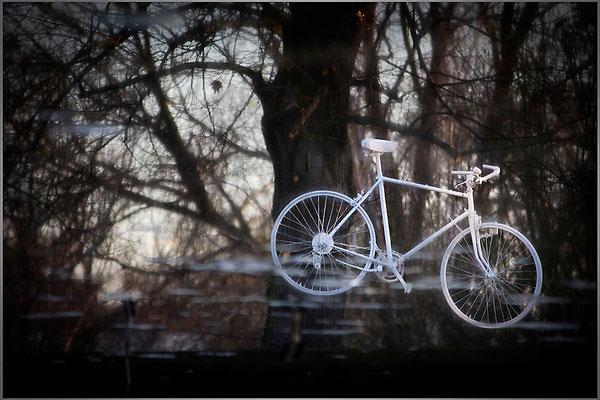 Verdrehungen - © Helga Jaramillo Arenas - Fotografie und Poesie / Januar 2014