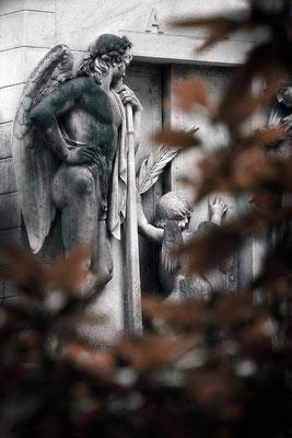 Vorbei der Herbst des Lebens - © Helga Jaramillo Arenas - Fotografie und Poesie  / August 2015