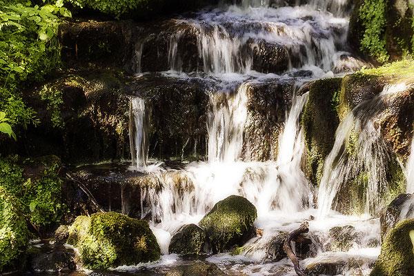 Wasserleuchten I. -  © Helga Jaramillo Arenas - Fotografie und Poesie / Juli 2021