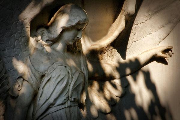 Die Sprache der Engel - © Helga Jaramillo Arenas - Fotografie und Poesie  / August 2015