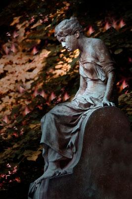 Von Irrlichtern umgeben - © Helga Jaramillo Arenas - Fotografie und Poesie / Februar 2015