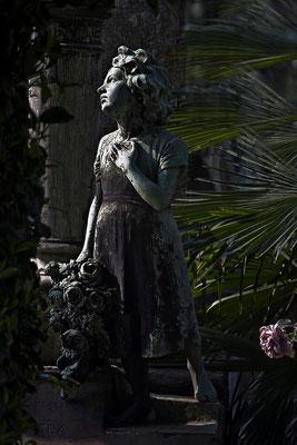 Schattenwelten - © Helga Jaramillo Arenas - Fotografie und Poesie / Juli 2013