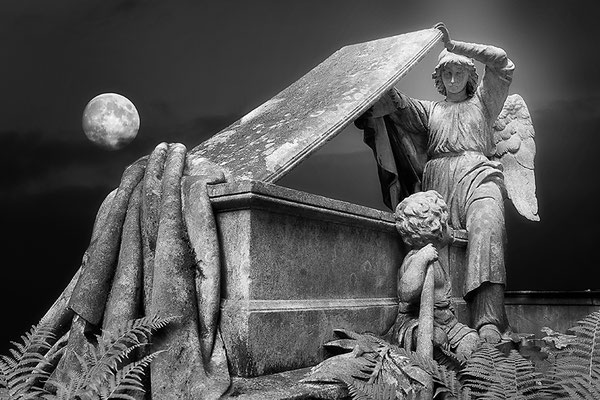 Der Blick des Engels - © Helga Jaramillo Arenas - Fotografie und Poesie / Juli 2013