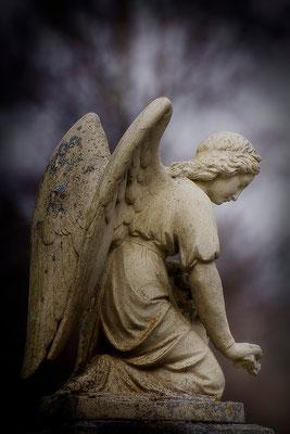 Die zärtlichen Gesten der Engel (2) - © Helga Jaramillo Arenas - Fotografie und Poesie / Mai 2015