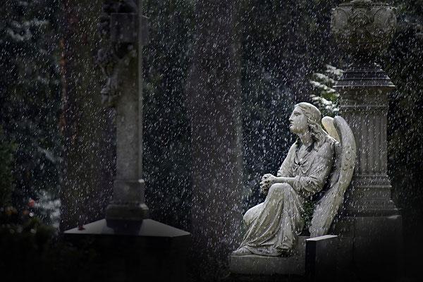 Gelassenheit an Regentagen - © Helga Jaramillo Arenas - Fotografie und Poesie / Februar 2014