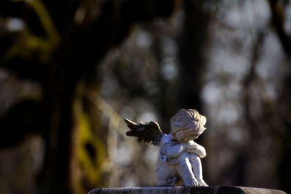 Himmlische Engelsgrüße - © Helga Jaramillo Arenas - Fotografie und Poesie / Mai 2015