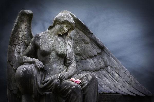 Rosen im Schoß (4) - © Helga Jaramillo Arenas - Fotografie und Poesie / Februar 2016