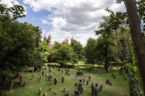 Übertragungen - Worms/Friedhof und Dom- © Helga Jaramillo Arenas - Fotografie und Poesie / August 2020