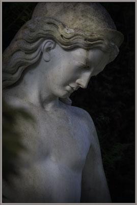 Anmut und Schönheit - © Helga Jaramillo Arenas - Fotografie und Poesie / März 2017