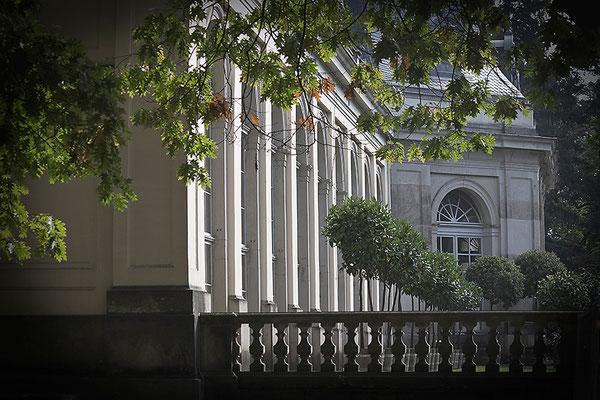 Blick zur Orangerie / Pillnitz - © Helga Jaramillo Arenas - Fotografie und Poesie / November 2014