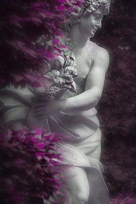 Herbst (1) - © Helga Jaramillo Arenas - Fotografie und Poesie / April 2018