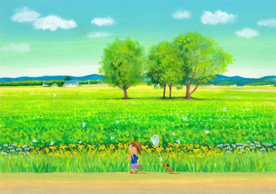 美しい北海道の風景画イラスト 水彩タッチアクリル 夏 道端の花たち