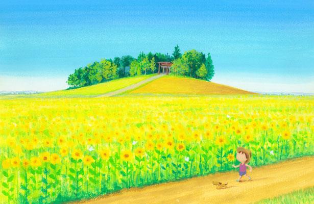 美しい北海道の風景画イラスト 水彩タッチアクリル 夏 ひまわり畑を散歩して