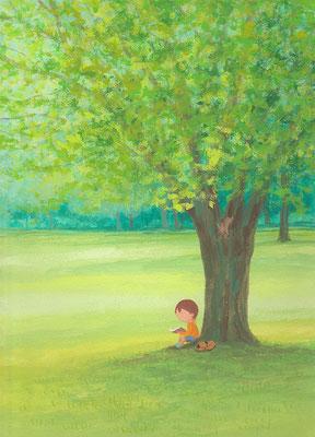 風景画イラスト 水彩タッチアクリル 美しい風景  木陰の読書 北海道札幌市