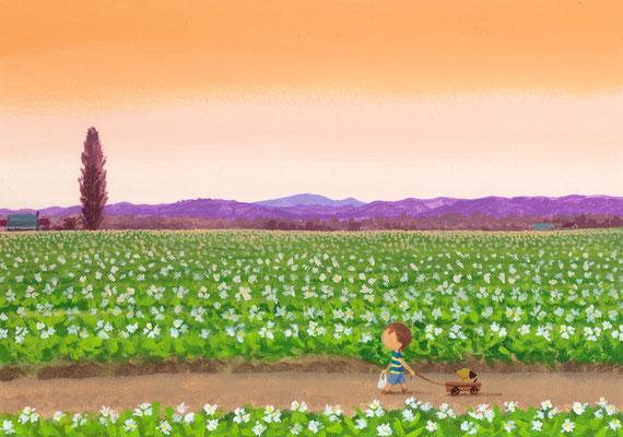 美しい北海道の風景画イラスト 水彩タッチアクリル 夏 夕暮れの帰り道