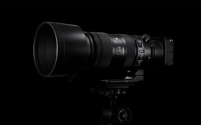 Sigma 60-600mm F4,5-6,3 DG OS HSM Sports