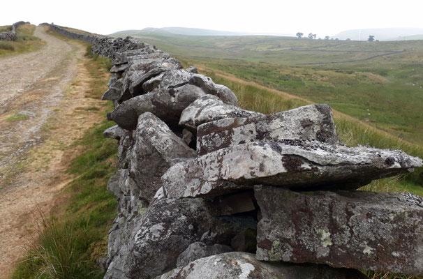 Pennine Way, Hardraw, Yorkshire Dales (Au Bout des Pieds)
