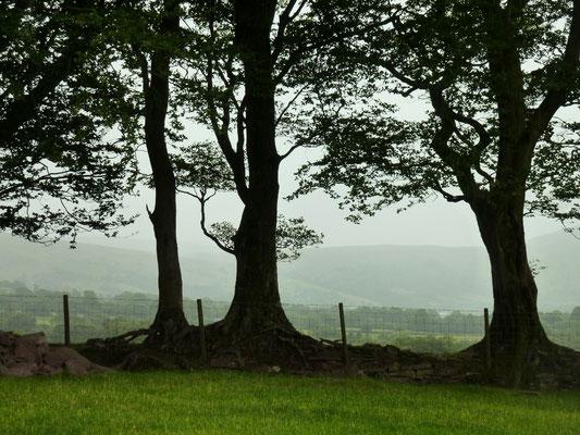 Brecon Beacons (Au Bout des Pieds)