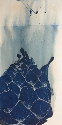 Knospe II | 60 x 90cm | Cyanotype auf Papier auf Holz