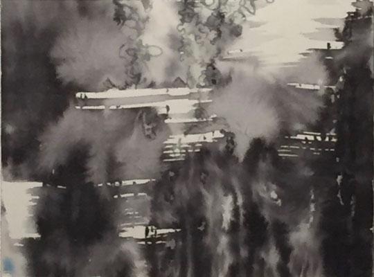 Reaktion II | 40 x 25 cm | Tusche auf Papier auf Aludibond
