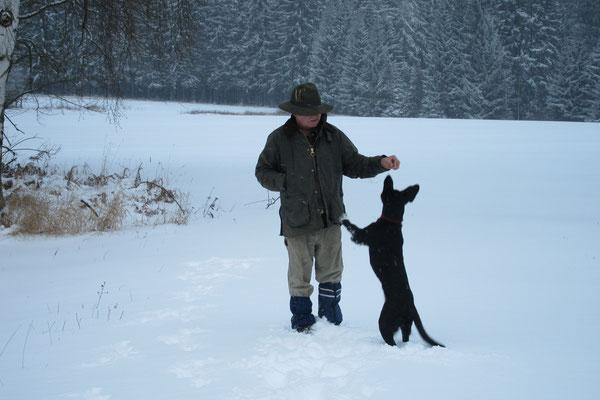Winterspaziergang mit Hund