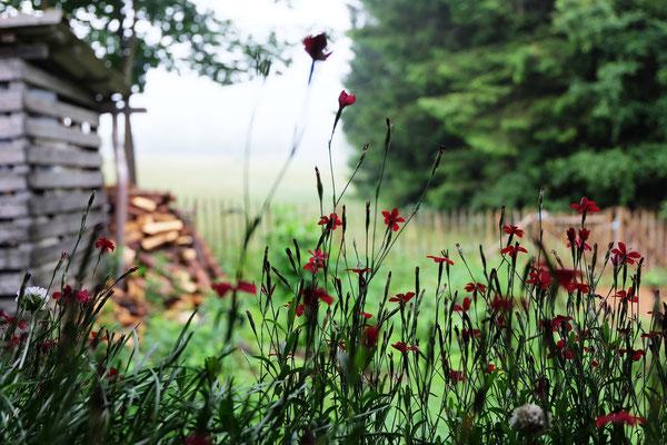 Foto von Sabine Wagner
