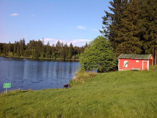 Der Ziegenbacher Teich (ca. 600 m entfernt) ist der offizielle Badesee