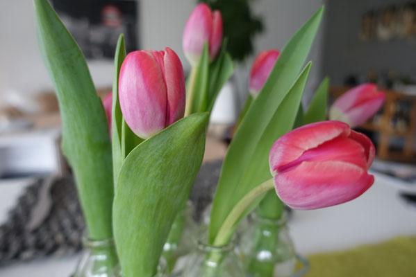 Pi mal Butter Mädchenvöllerei - Tulpen Blumen