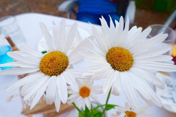 Blumen - Mädchenvöllerei Pi mal Butter