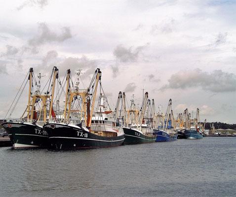 De vissershaven van het dorp Oudeschild met afgemeerde vissersschepen.