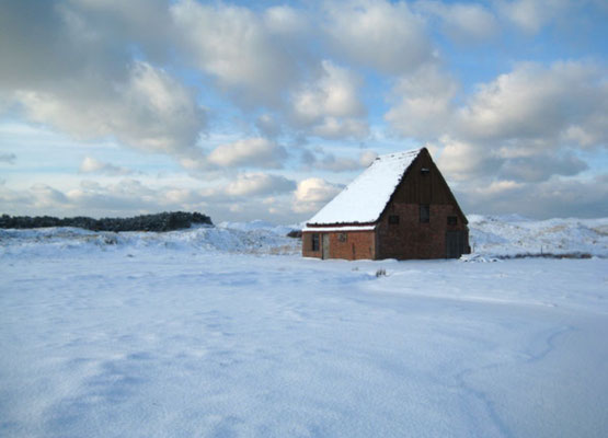 Schapenboet bij Den Hoorn in de winter.