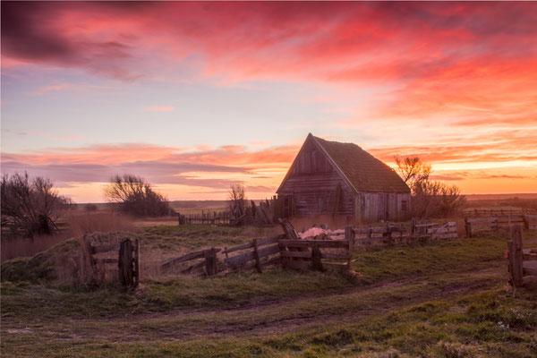 Texelse schapenboet bij zonsondergang.