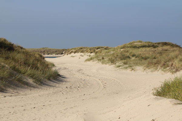 Zandpad door de duinen.