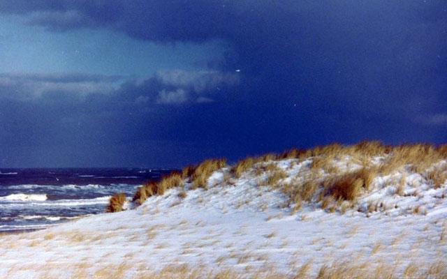 Besneeuwde duinen.