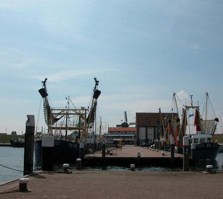 """De vissershaven van het dorp Oudeschild met op de achtergrond de korenmolen """"De Traanroeier""""."""