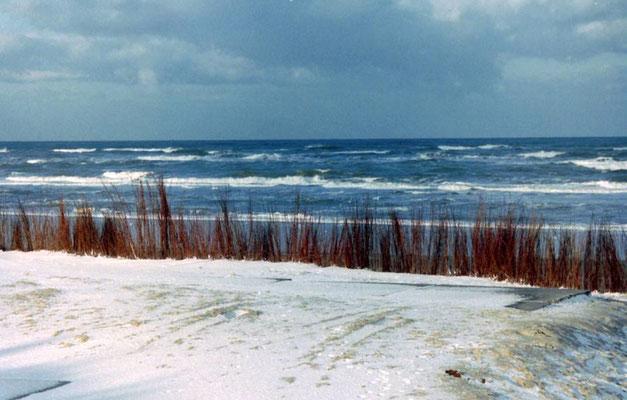 Besneeuwde duinen met op de achtergrond de zee.