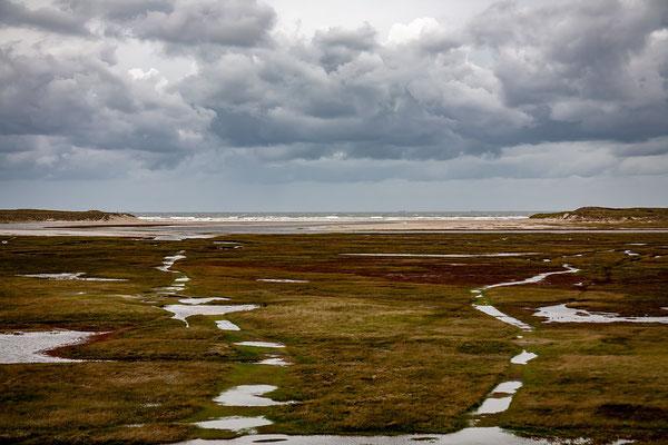 """Kreken in """"De Slufter""""met in de verte de Noordzee."""