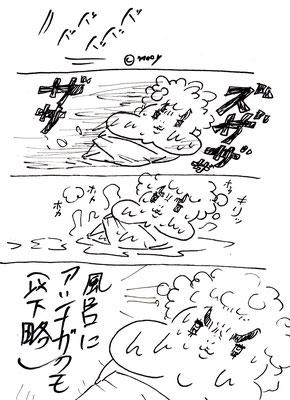 アシナガグモとミー③