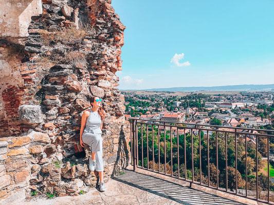 Ausblick von der Burg im Kamptal
