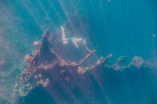 Sceletton Wreck Coron Island Hopping Tour die beste