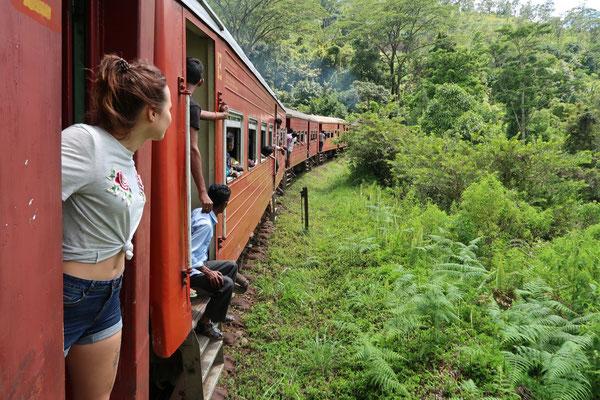 ZUffahrt in Sri Lanka
