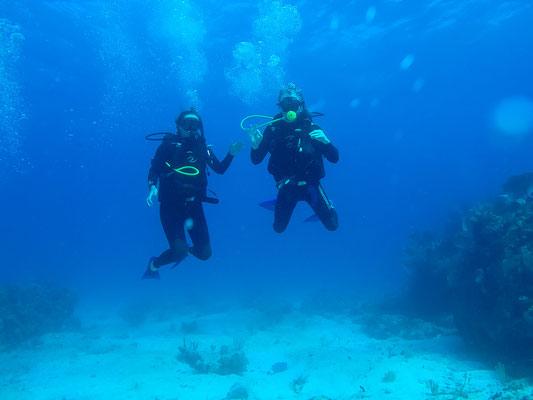 PADI Tauchkurs auf Isla Mujeres
