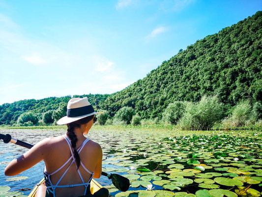 Skadar Lake Montenegro Reisetipps